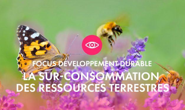 Focus développement durable : La sur-consommation des ressources terrestres
